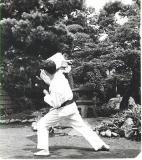 yamaguchitaiani